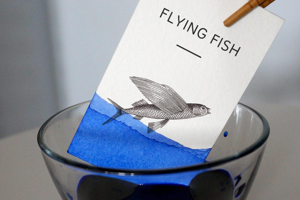 webandesign_identity_flying_fish