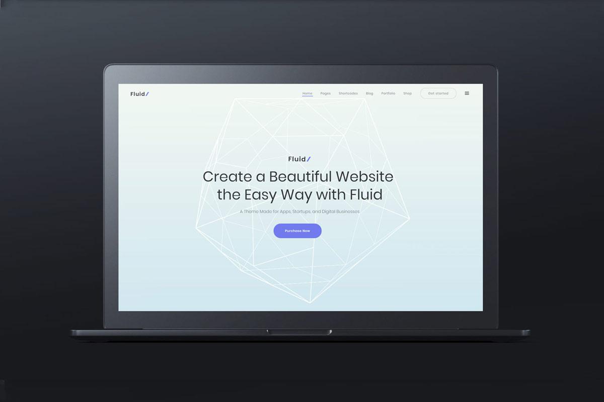 webandesign_web_design_fluid_1